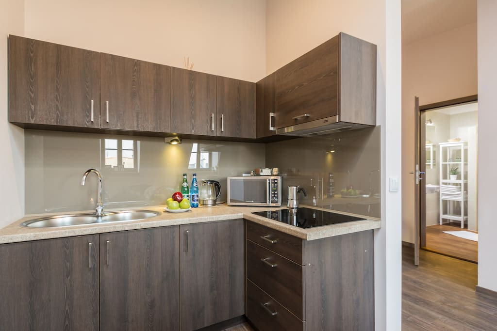 Fully equipped kitchenette with a refrigerator, microwave and a hotplate.
