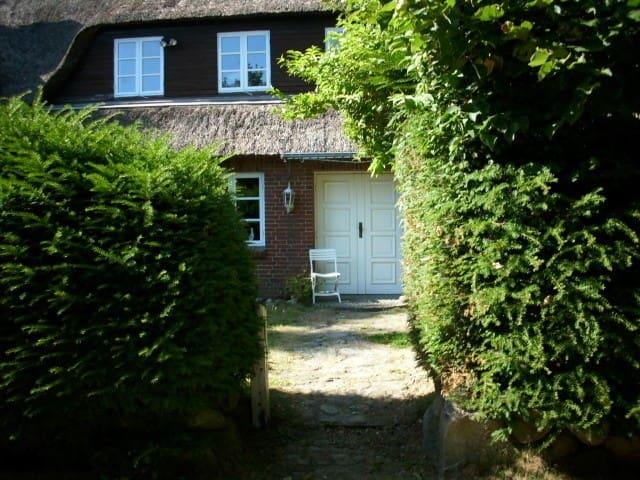 Ferienhaus für 11 Gäste mit 250m² in Böel (124081)