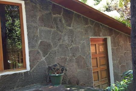 The Cabin - Cerro de Oro