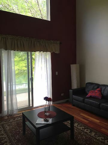 Serene and Elegantly Furnished Home - Romeoville - Apartment