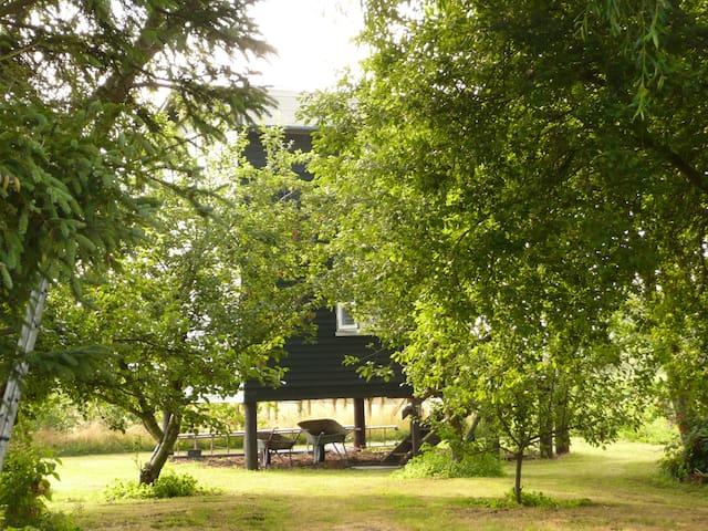 Wodden cottage in beautiful nature - Bindslev
