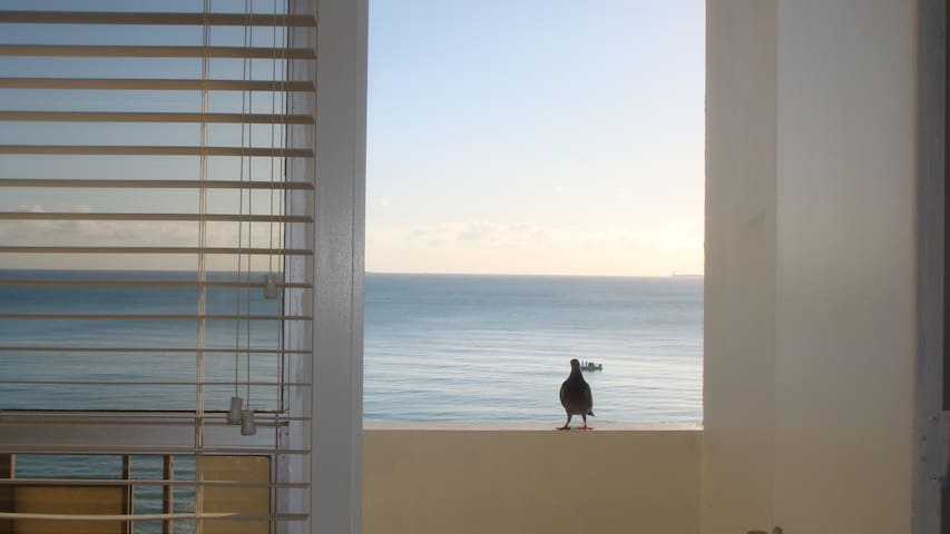 OCEANFRONT, BALCONY, WIFI, PARKING