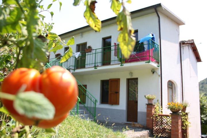 Casa vacanze in Garfagnana - Molazzana - Rumah