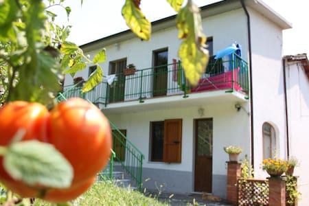 Casa vacanze in Garfagnana - Molazzana