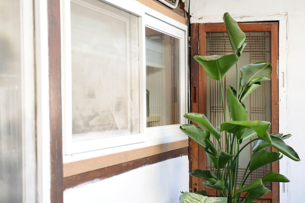 마당에서 바라본 침실 창문