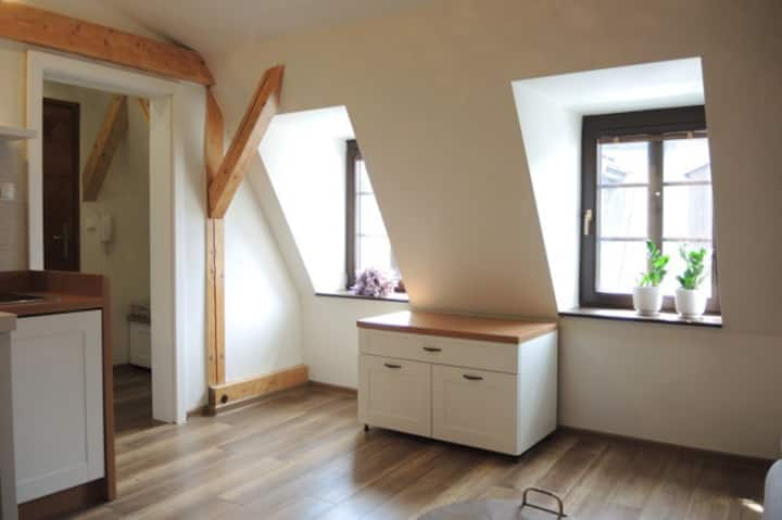 Cozy Apartment in the Heart of Levoca