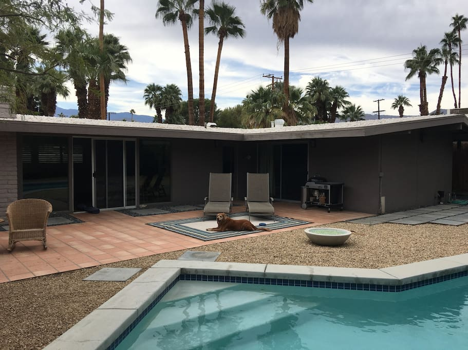 Mid Century Home w Pool Close to El Paseo Houses for Rent in Palm Desert