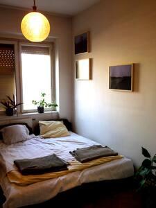 Nice room in city center 1 - 貝爾格萊德 - 公寓