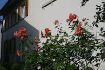 Ferienwohnung Kruse Bodenseeregion