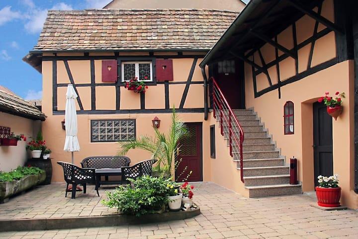 CHAMBRE SALLE d'EAU INDEPENDANTE - PROFESSIONNELLE - Vendenheim - Dům