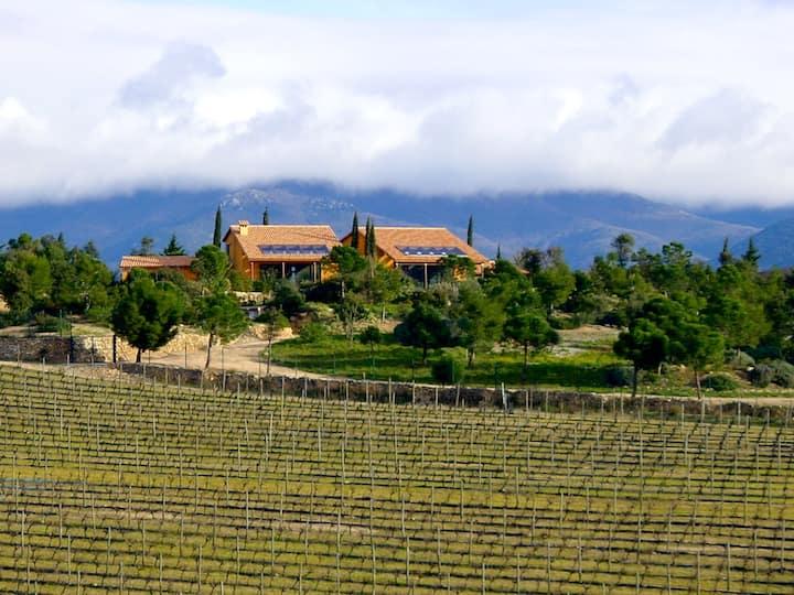 Alt Emporda- Tourism in a vineyard property