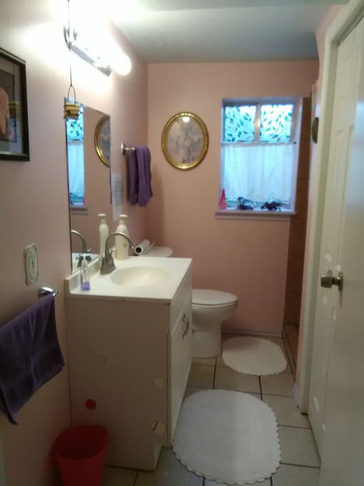 Private bathroom with shower, toilet, sink.  There are clean bath towels, washcloths, hand towels, soap, toothpaste, toothbrushes and a blow dryer under the sink.