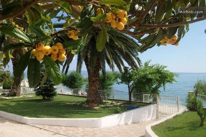 Adriatic Family Oasis / 2bdrm/2bath - Podstrana - House