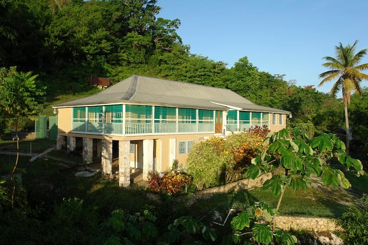 Retreat Plantation House - Negril - House