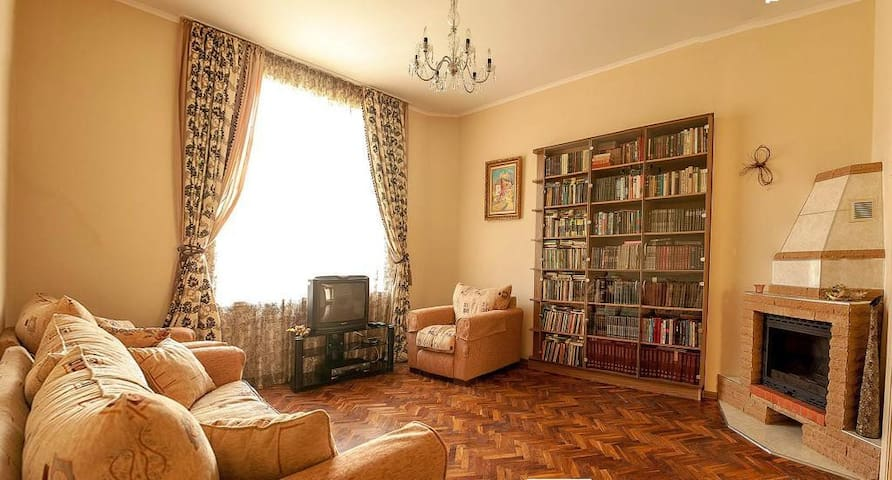 Large and Cosy Flat in Downtown - Lviv - Apartamento
