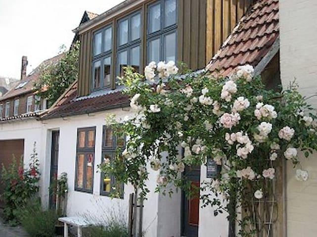 Lütt Hus-in zweiter Reihe zum Hafen - Tönning - Huis