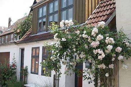 Lütt Hus-in zweiter Reihe zum Hafen - Tönning