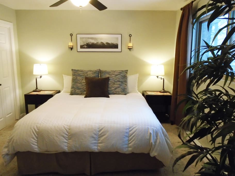 Master bedroom with very comfortable California king bed.