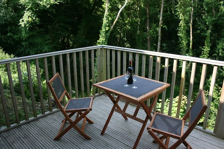 Lovely room+superb ensuite+balcony - Llechryd - Bed & Breakfast