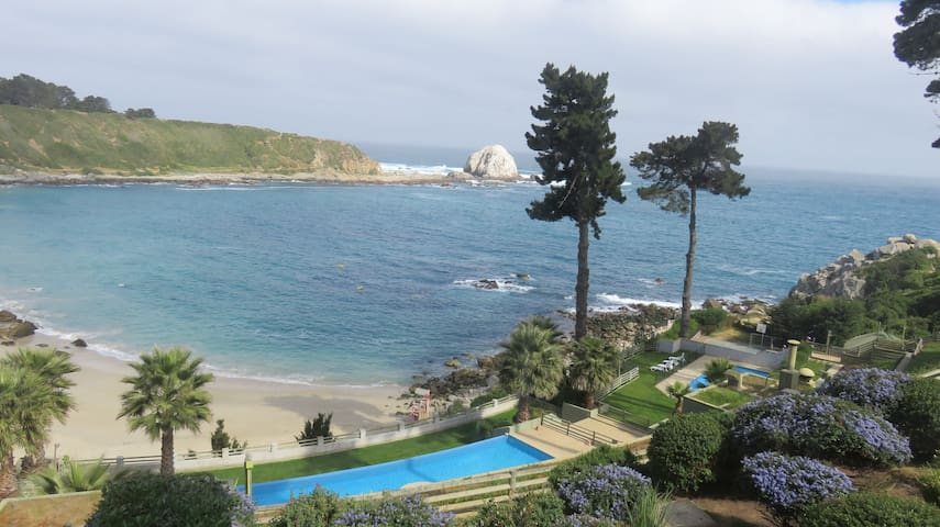 Dpto vista al mar playa Canelillo, Algarrobo - Algarrobo - Appartement