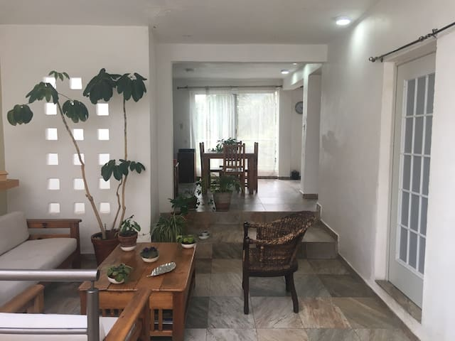 Enjoy Guanajuato: Beautiful & comfortable house