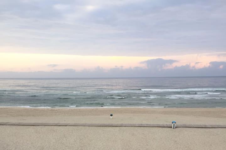 Costa Nova Atlantic View