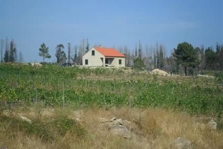 Horta Rija