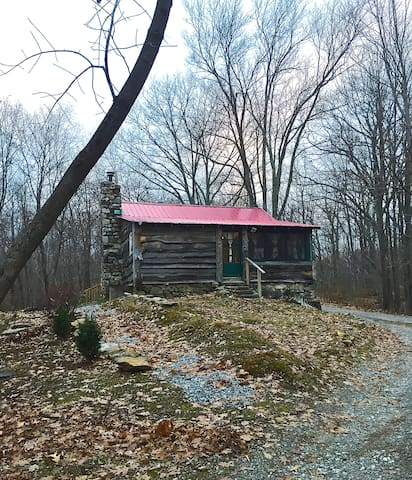 Cozy Cabin in the Woods- 55 mi from NYC - Holmes - Srub