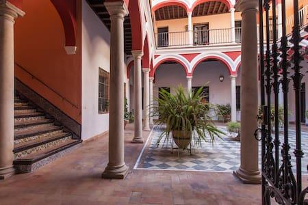 APARTAMENTO EN CASA-PALACIO.WiFi - Seville