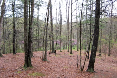 Secluded Private Camping by River - Creekvale - Annat