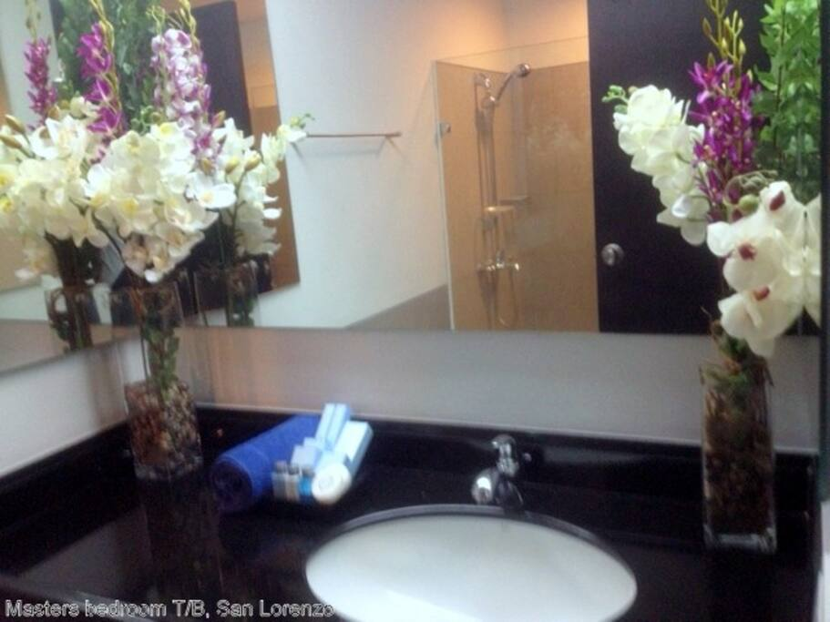 masters' bedroom toilet/ bath, 5 star++ hotel amenities