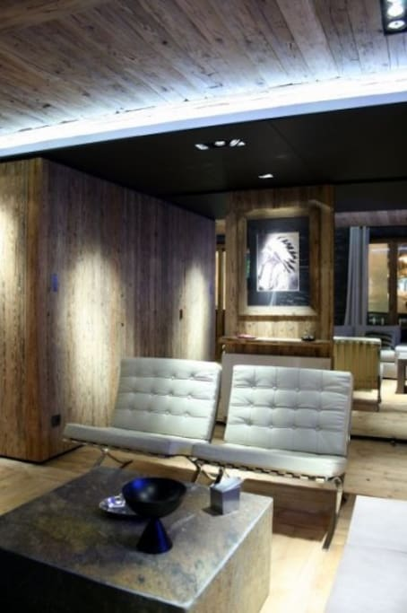 appartement au coeur de meg ve appartements louer meg ve rh ne alpes france. Black Bedroom Furniture Sets. Home Design Ideas