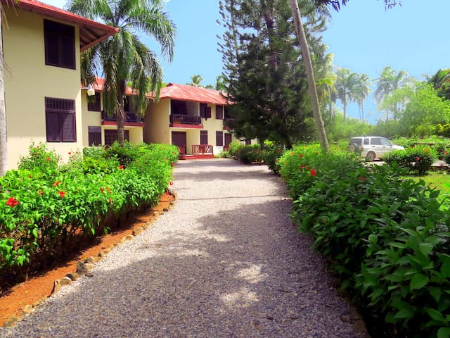 El Pelicano furnished apartment #9 - Las Galeras - Leilighet