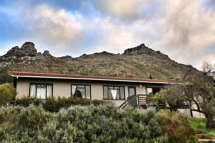 Cozy Sunlight Rooms with Views of Hout Bay Valley