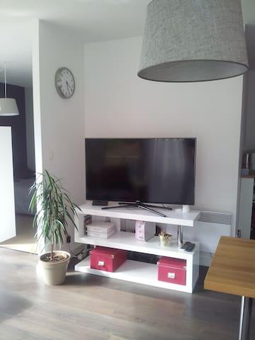 La TV avec box et internet en accès libre