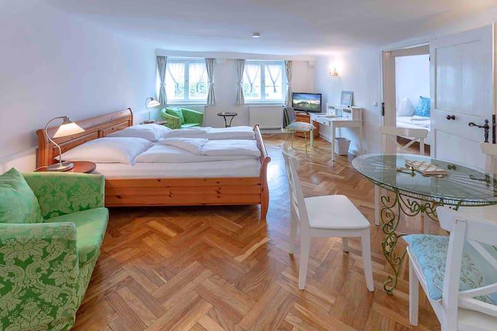 "Charming apartment ""Antonia"" in the Getreidegasse"