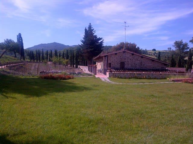 Agriturismo Bonacchi 'Brunello'  - Montalcino - Apartment