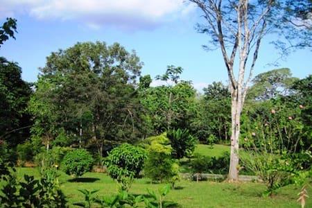Garden Hacienda - Hus