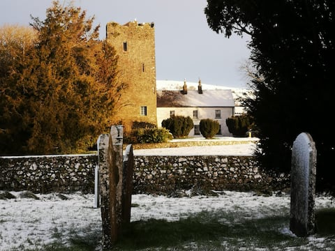 Clomantagh Castle