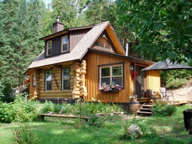 Off Grid Log Cabin, Wood Fired Hot Tub, Sauna