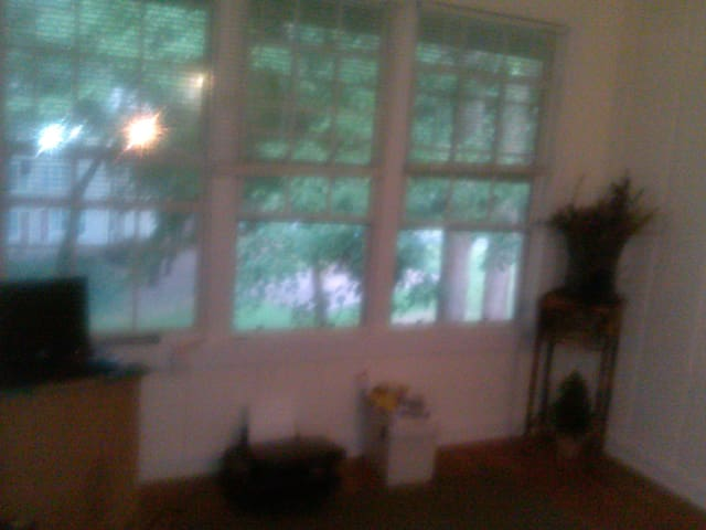 Private Room  - Stone Mountain - Bed & Breakfast