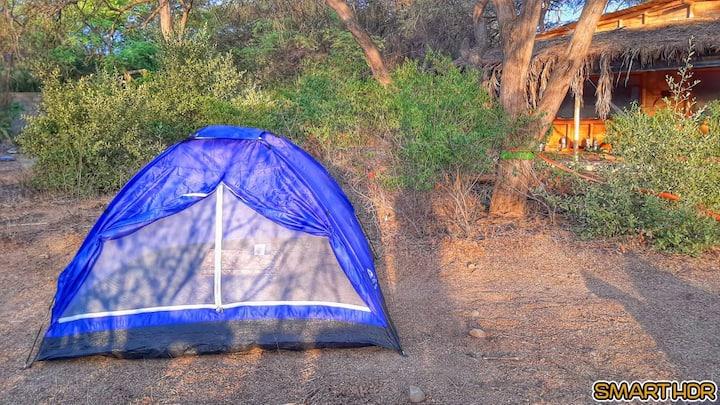 Camping en Eco Aldea Salvaje