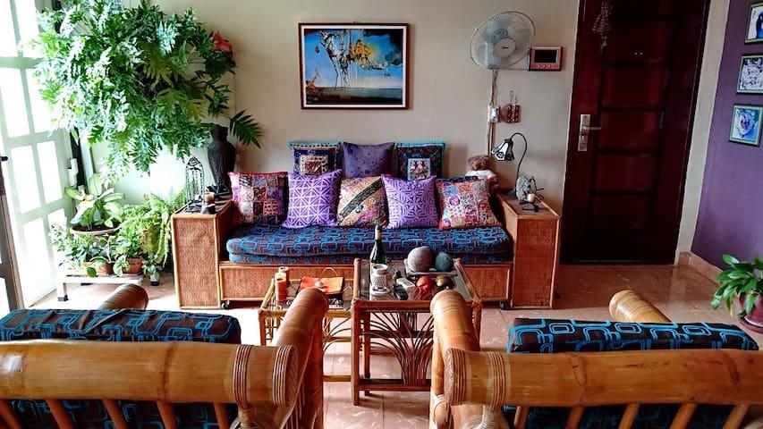 Casa Lunass with Art in Havana Center 3