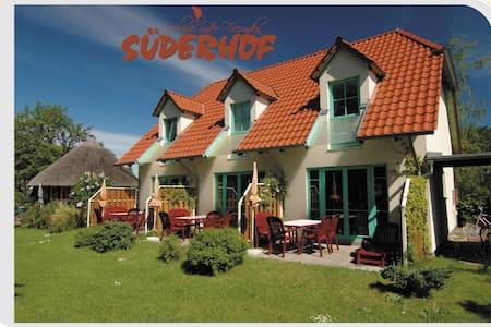 carfree island/autofrei OstseeInsel - Hiddensee