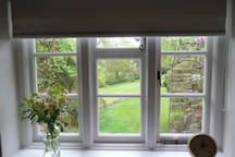Garden view from bedroom.
