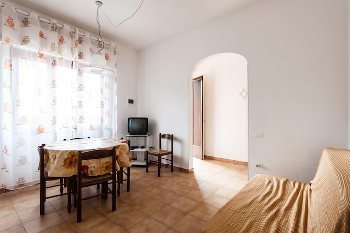 BILOCALE LUMINOSO VICINO AL MARE - Mazzanta - Appartement
