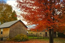 Fall color and studio