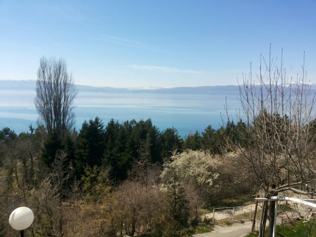 Villa Spaseski - Ohrid - Apartment