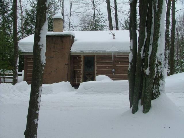Winter Wonder Woodland  !  No close Neighbors !