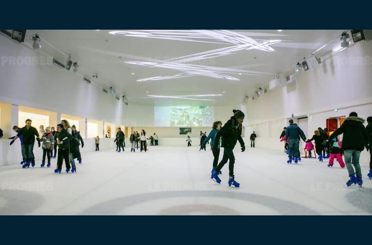 studio face à la patinoire, remontées  4mn en auto